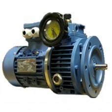 มอเตอร์ปรับรอบแบบหน้าแปลน 1/4HP,380V