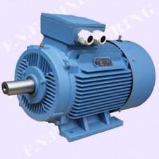 มอเตอร์เหล็กหล่อแบบขาตั้ง 1000 RPM,0.75KW,1.0HP,380V